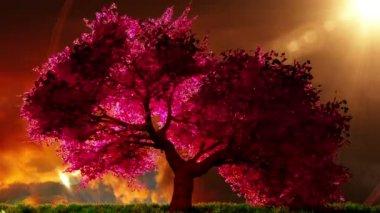 神奇的樱桃树,3d 渲染
