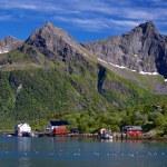 Norwegian village — Stock Photo #13401086