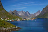 Ville de la reine sur lofoten — Photo