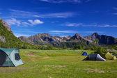 Wildcamping on Lofoten islands — Stock Photo