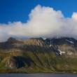 Lofoten coast — Stock Photo
