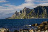 Norveç sahil uçurumlarda — Stok fotoğraf