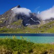 Summer in fjord — Stock Photo