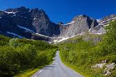 дороги в норвегии — Стоковое фото