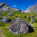 Norwegian landscape — Stock Photo #23590753