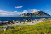 Norway in summer — Stock Photo