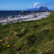 Beach on Lofoten islands — Stock Photo