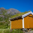 Shed with green roof — Stock Photo