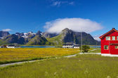 Lofoten islands in Norway — Stock Photo