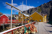 Fishing industry in Norway — Stock Photo