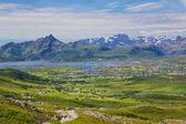 лето в норвегии — Стоковое фото