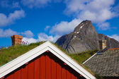 在挪威罗弗敦海 — 图库照片