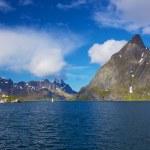 Scenic norwegian fjord — Stock Photo #25102373