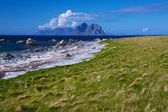 Scenic beach on Lofoten islands — Stock Photo