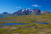Lofoten mountains — Stock Photo