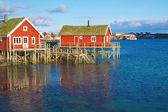 Norwegian fishing houses — Stock Photo