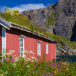 Norwegian fishing hut — Stock Photo