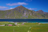 Scenic Lofoten islands — Stock Photo