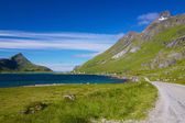 Vackra vägen på lofoten — Stockfoto