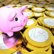 Piggy bank on money — Stock Photo