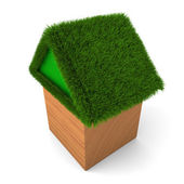 House with green roof — Stock Photo