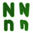 Letter N made of grass — Stock Photo #40817413