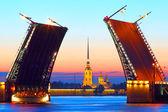 St .petersburg、ロシア、宮殿の橋とピーターおよびポールの要塞 — ストック写真