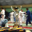 Youth Judo competition. - ストック写真