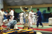 Youth Judo competition. — Stock Photo