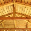 Roof structure — Stock Photo #25879703