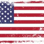 Flag of USA — Stock Vector #27956621