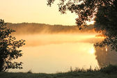 Foggy lake — Stock Photo