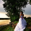 Royalty-Free Stock Photo: Bride at the riverside, back view