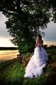 Bride at the riverside, back view — Stock Photo