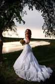 The bride at the riverside under the arch of branches, back view — Stock Photo