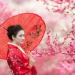 Geisha with umbrella on a flowering tree branches background — Stock Photo