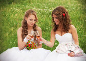 Two brides — Stock Photo