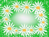 緑のカモミール。フレーム — ストックベクタ