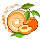 Apricot. — Stock Vector