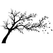 Tree silhouettes. — Stock Vector
