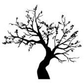 Tree isolated — Stock Vector
