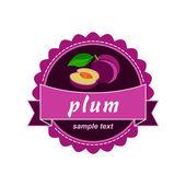 Vector plum. Fruit fresh labels. — Stock Vector