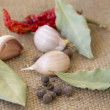 Garlic and spices on sacking — Stock Photo