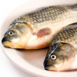 Fresh fish on plate — Stock Photo #19785801
