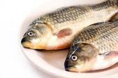 Fresh fish on a plate — Stock Photo