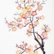 Chinese painting of flowers, plum blossom — Stock Photo #18508583