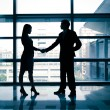 Successful business woman and man handshaking — Stock Photo