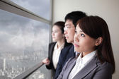 Business team look city through window — Stock fotografie