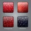 Royalty-Free Stock Vector Image: Buttons with different berries textures