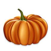 Orange pumpkin. — 图库矢量图片